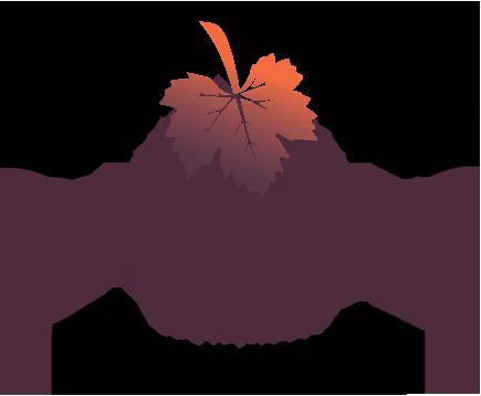 Napa Valley COAD Logo